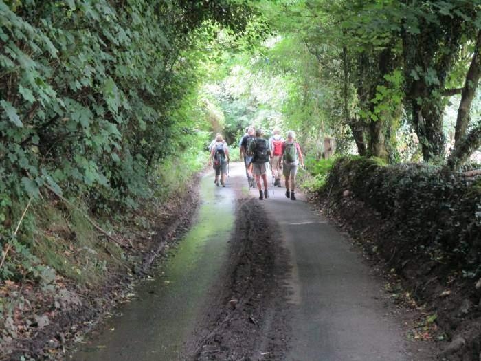 We follow this quiet road