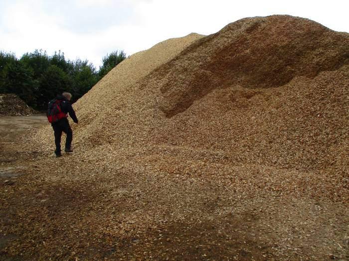 Keith investigates a chip mountain