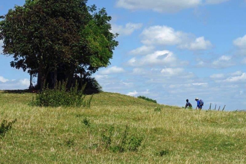 Up a slight hill