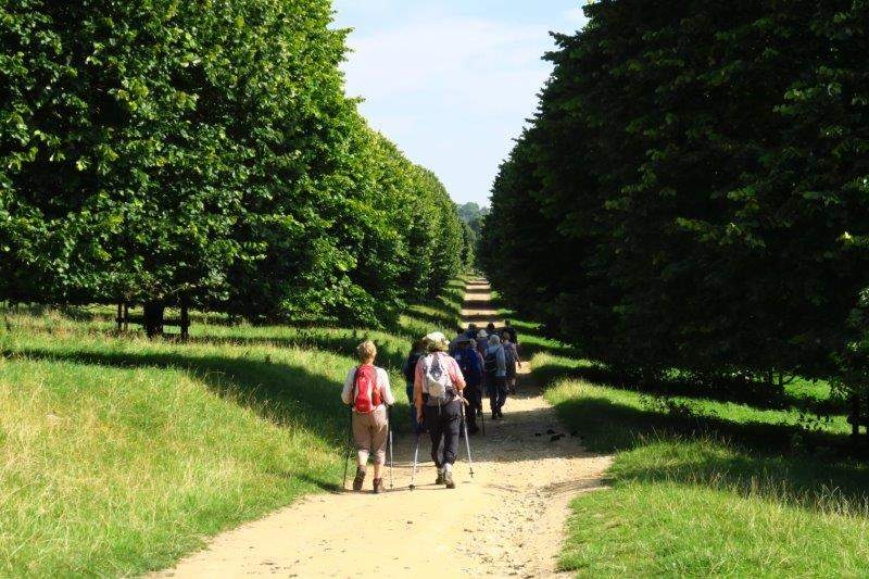 And along an avenue of trees