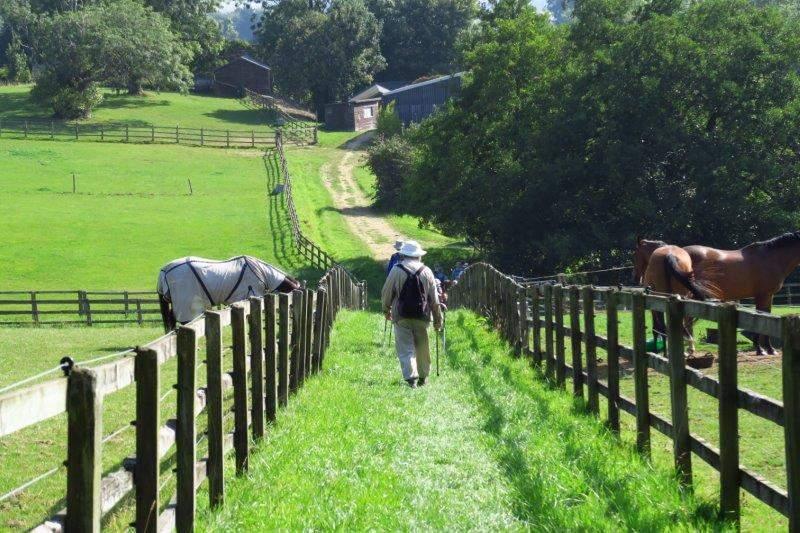 Then through a farm