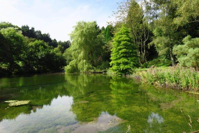 With a pretty pond