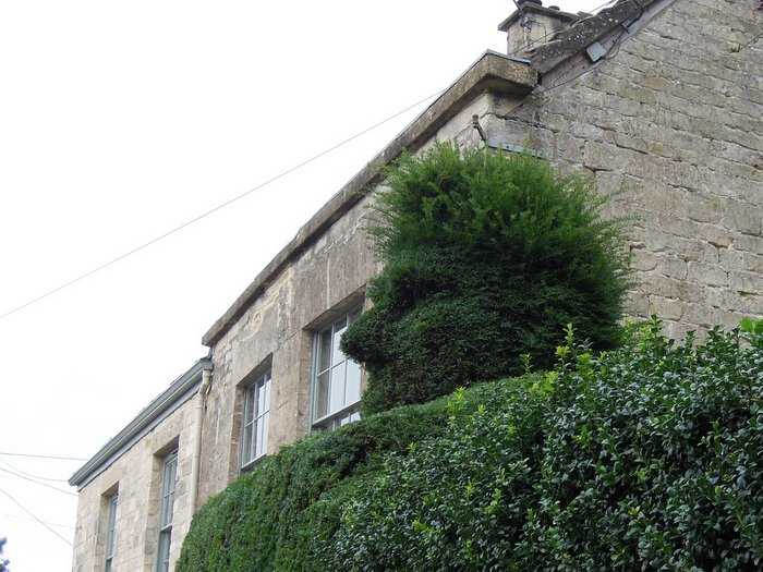 Topiary - not many notice the green man, too busy still chatting