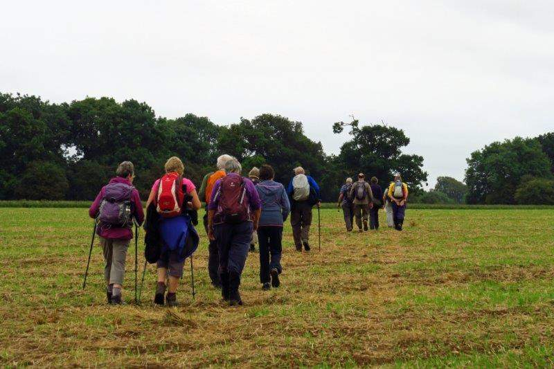 Continuing across fields