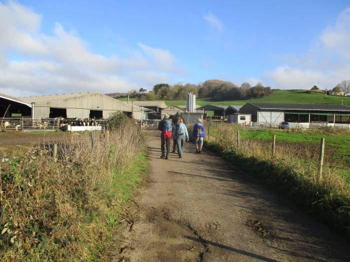 Through a farm