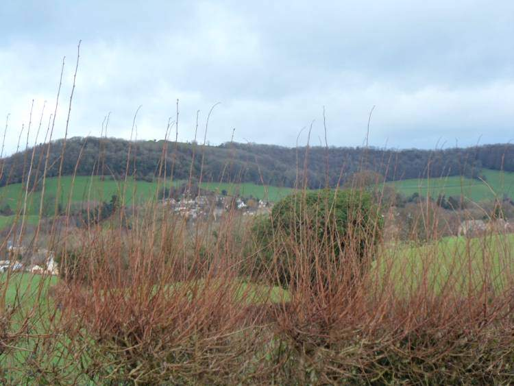 A view across to Stinchcombe Hill