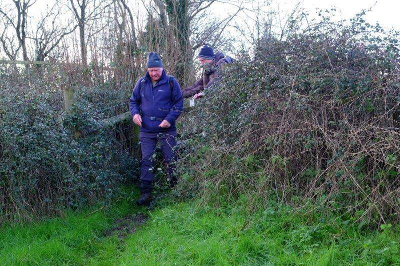 Allen careful not to get caught on the brambles