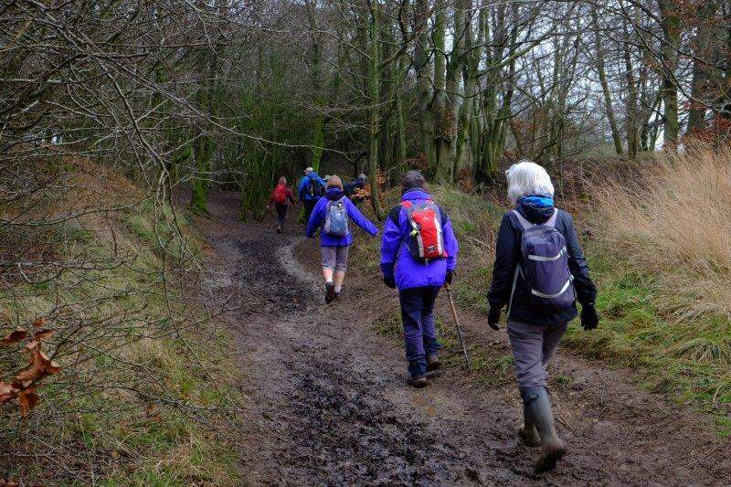 We then make our way along a muddy track on the top