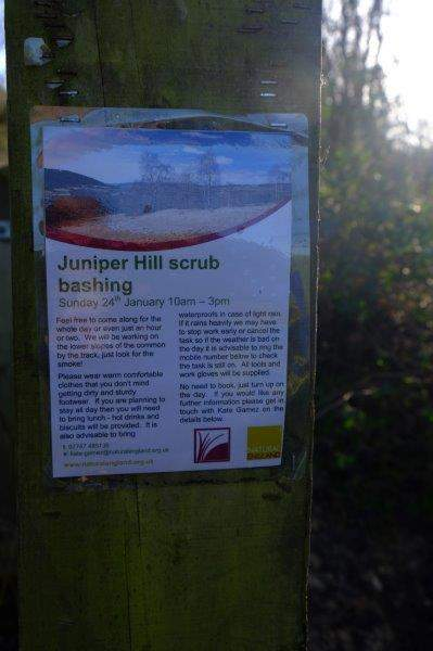 Now what have they got against the scrub on Juniper Hill!?