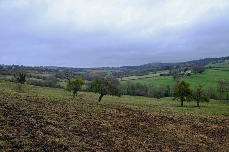 Looking up the valley to Painswick Beacon and Cud Hill