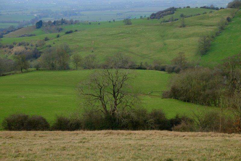 Looking across to Vinegar Hill