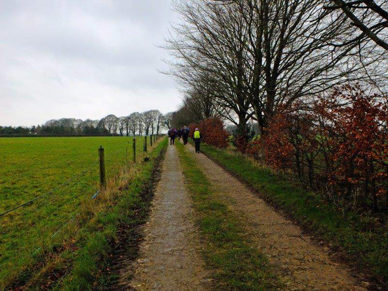 Continuing through Gatcombe Park