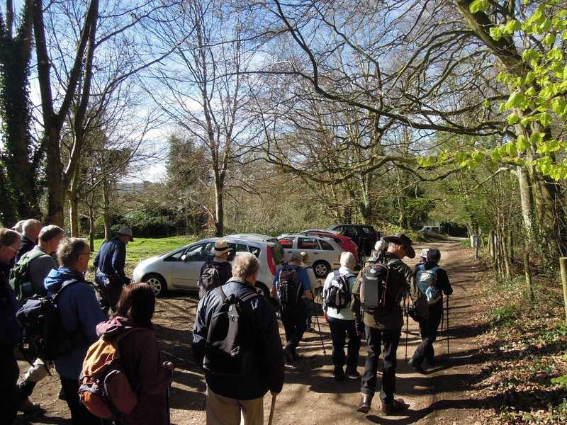 The best weather of the week for Jill's walk