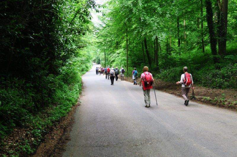 Heading towards Wishanger