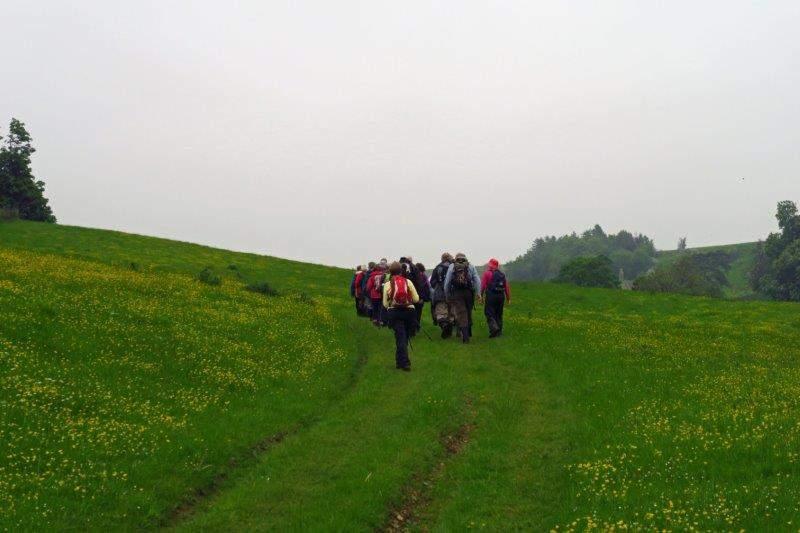 Towards Lasborough