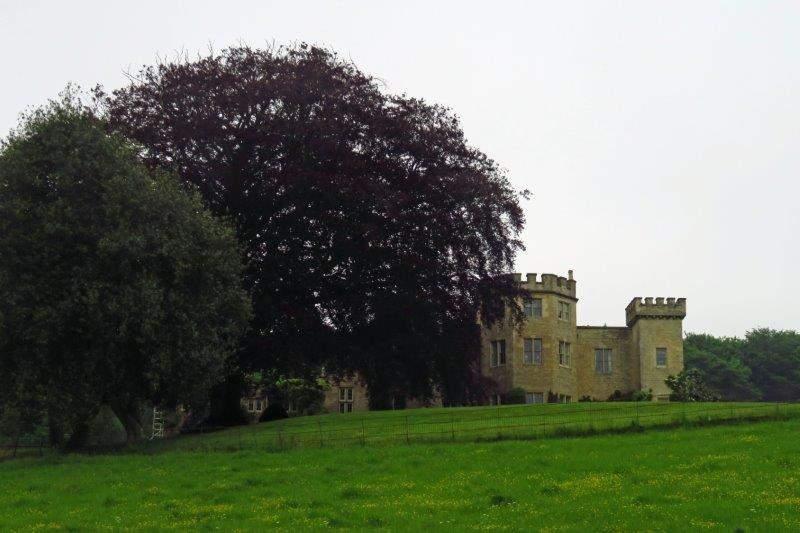 Lasborough Park