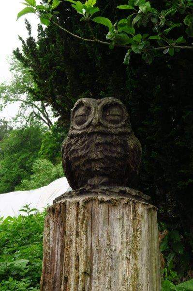 Keeping a watchful eye