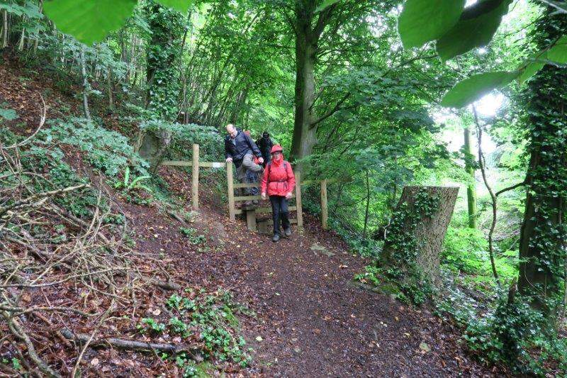 Still on the Cotswold Way