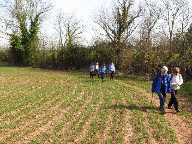 And then leads us out across fields