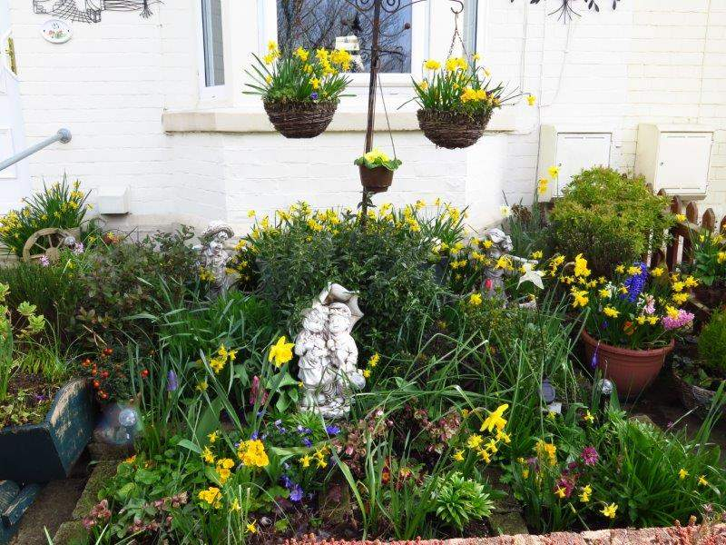 To Newtown - and a colourful front garden