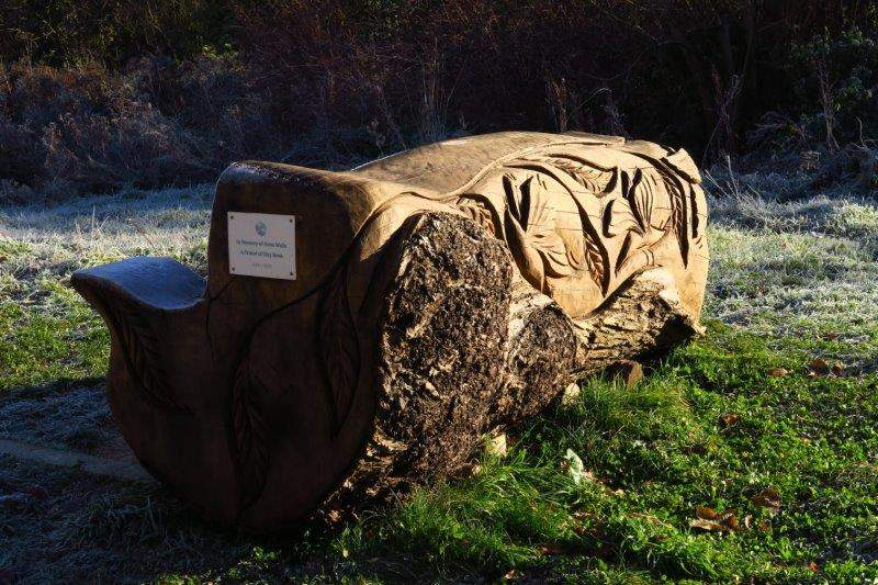 An unusual seat in the nature reserve