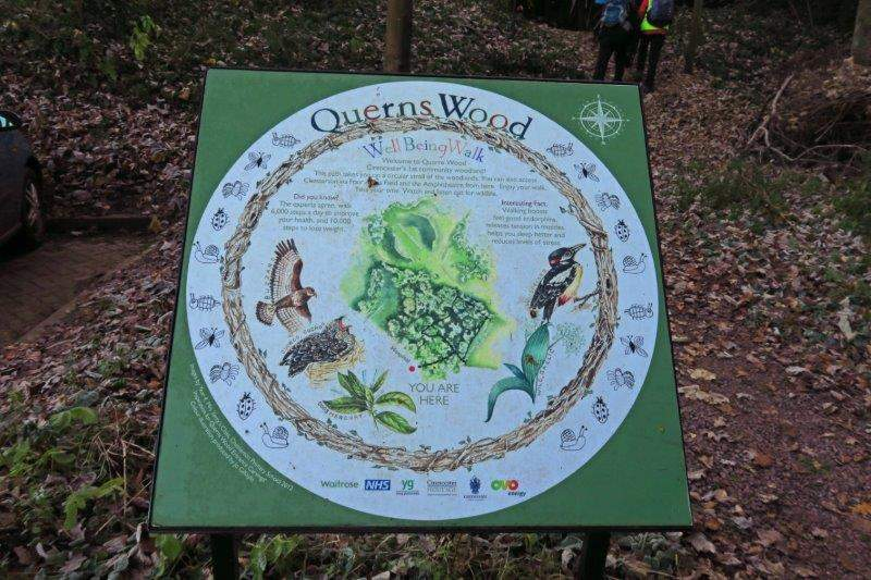 And Querns Wood