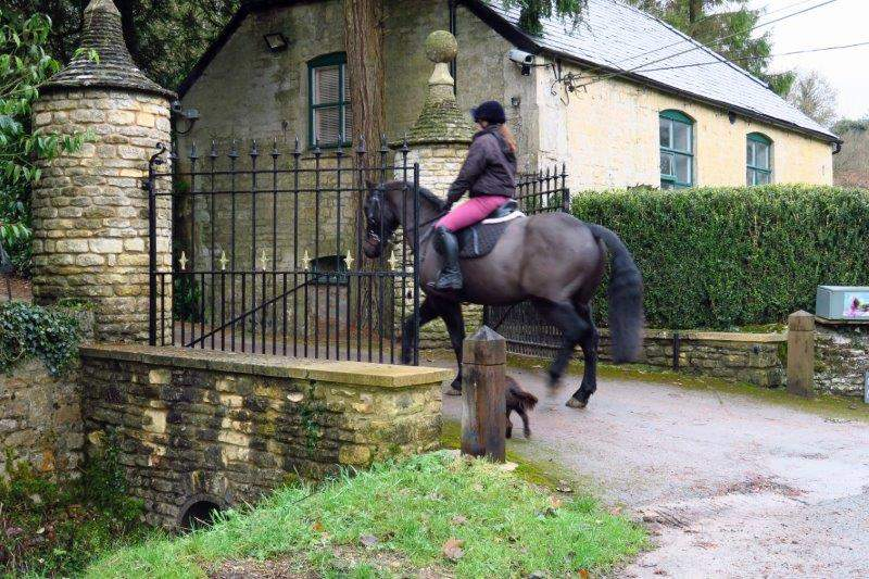 As we watch a horse and rider go into the Manor