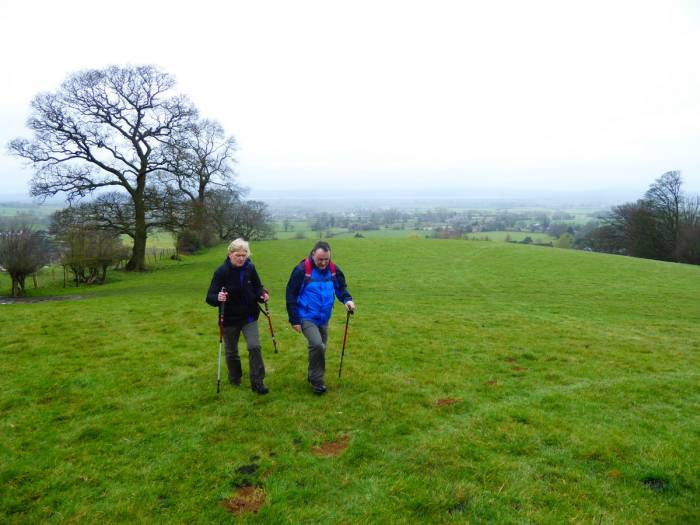 After a short pause to rescue a sheep from the hedge we head up towards Coaley Wood