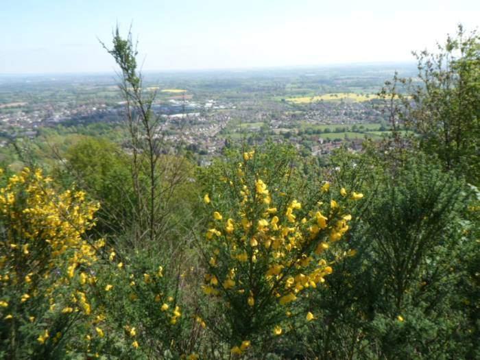 Stunning views over Great Malvern