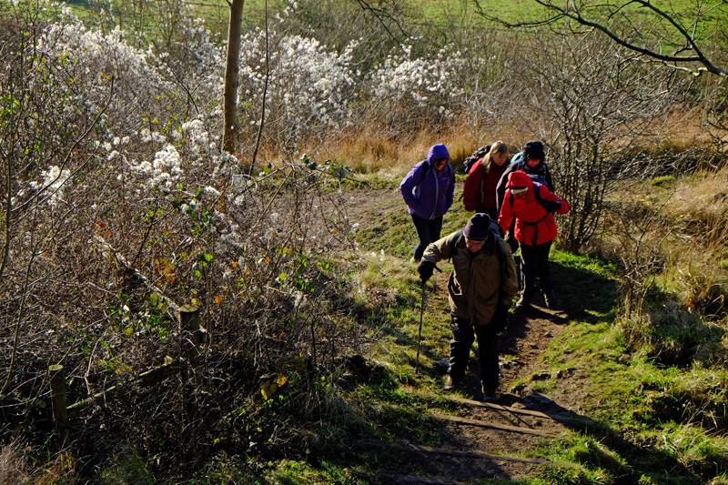 We make our way over to Haresfield Beacon