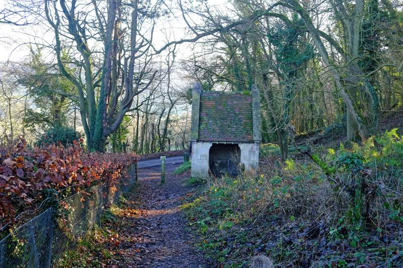 Past the old well