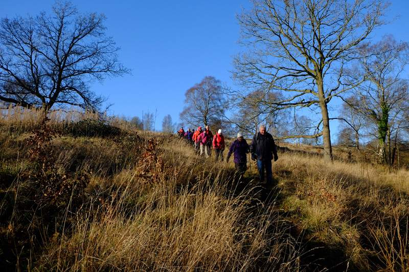 Downhill on the Cotswold Way