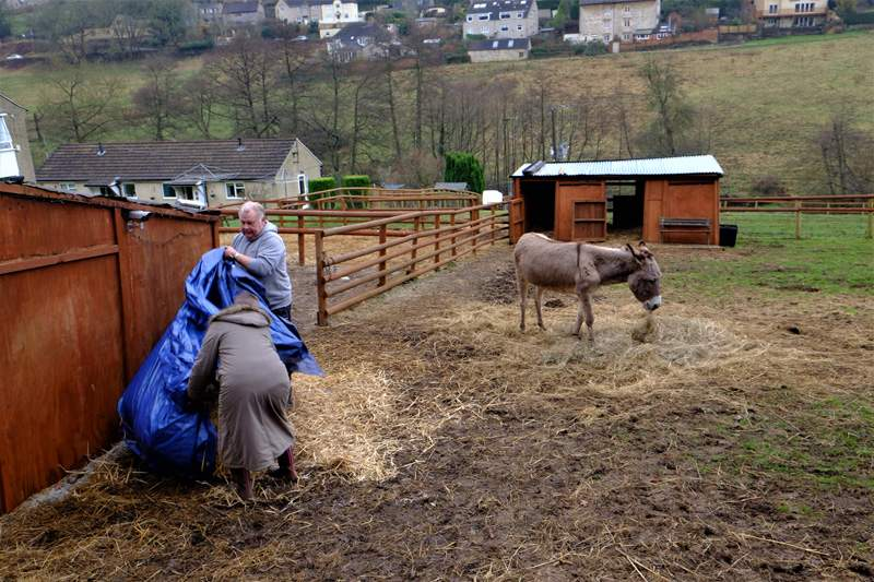 We stop at a new donkey sanctuary to speak to the owner (see News Link at bottom of page)