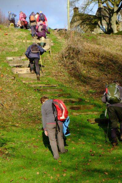 Others still toiling uphill