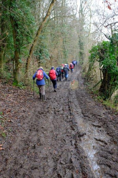 As we follow a muddy woodland track