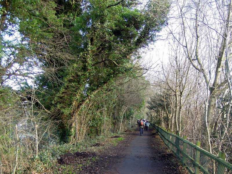 On the cycle track