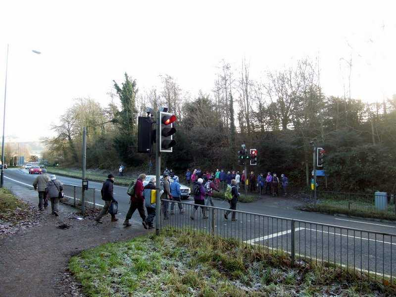 Most cross the bypass, while a few cut back to the cars