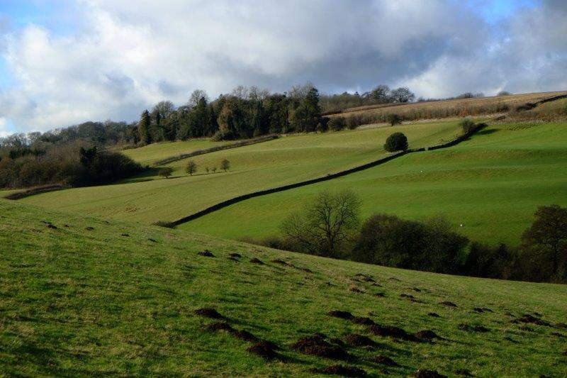 Gently rolling countryside