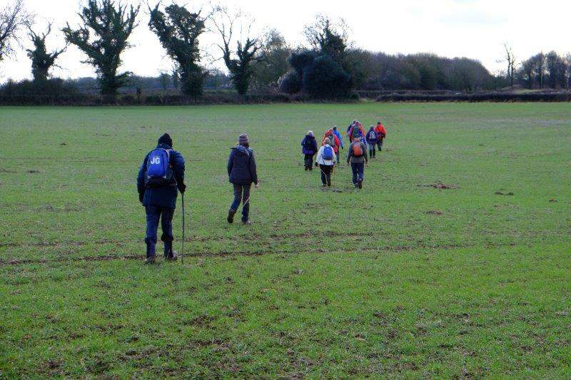 Then a field cropped but muddy