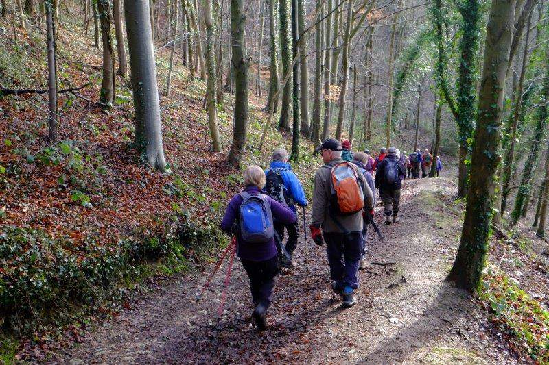 We head off into Standish Woods