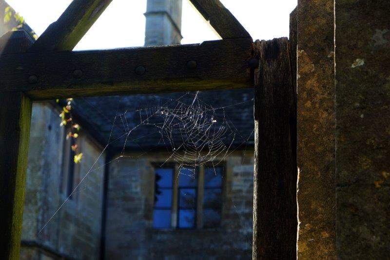 A cobweb in the gate of the manor house - just like home