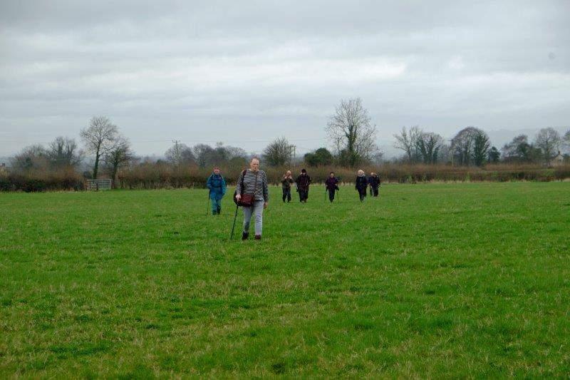 We spread out across fields