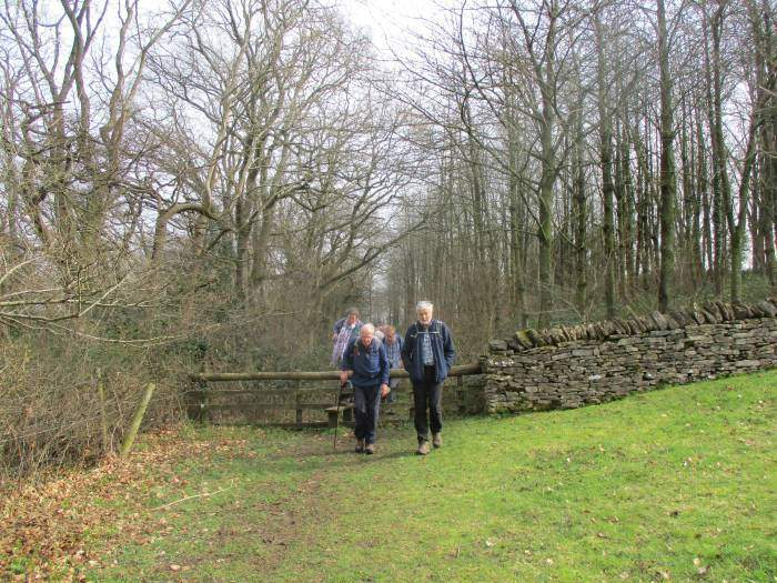 Out of the woods at Bown Hill