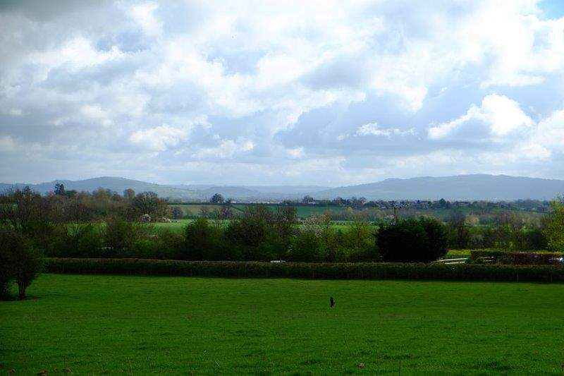 Cotswold Hills forming a backdrop to our walk