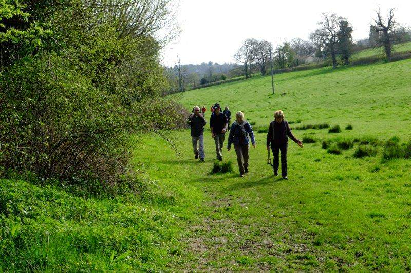 Before making our way along the Painswick Stream