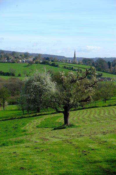 Painswick Church standing out