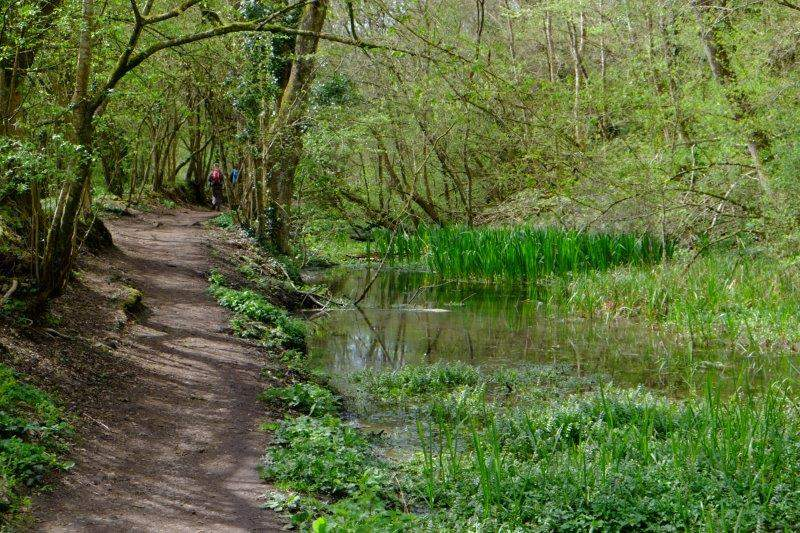Continuing along the towpath