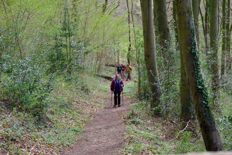 Then up through the woods