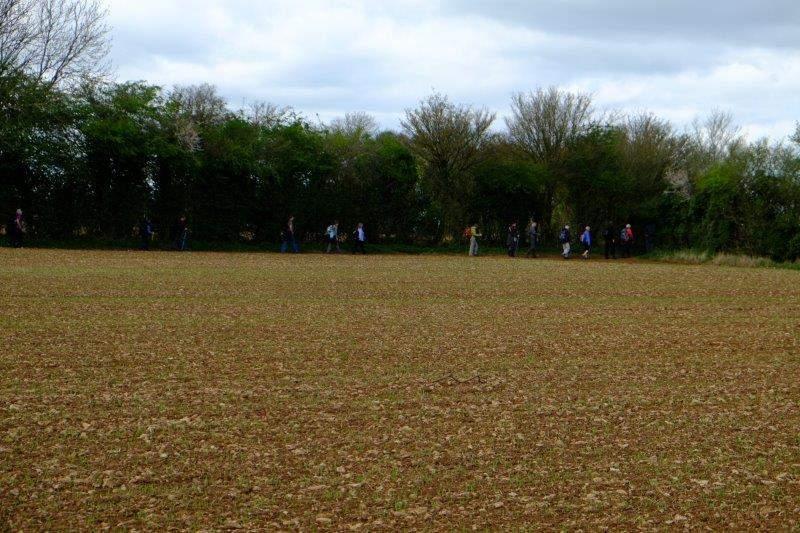 Following a track across fields
