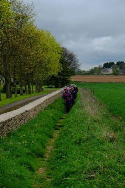 Then a narrow path